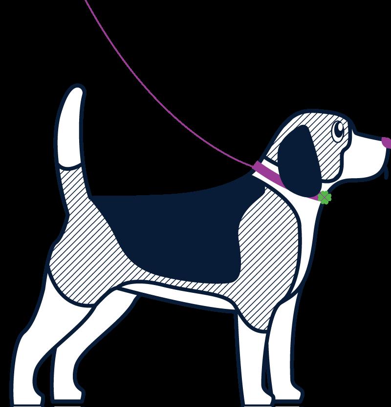 Dog2 (3)