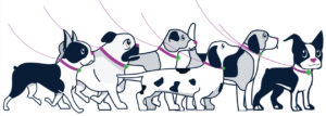 all-the-doggies-leashed