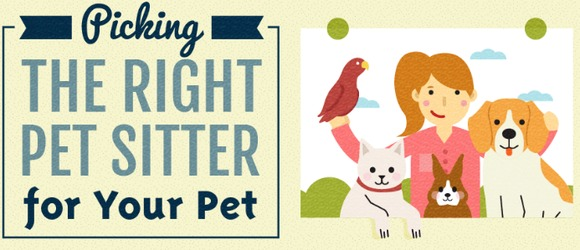 Everything-You-Need-to-Know-About-Pet-Sitters-Pet-Sitting-Business-Infographic